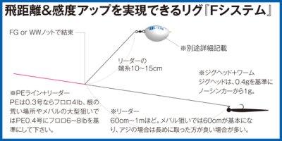 画像1: アルカジックジャパン ぶっ飛びRockerII