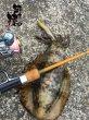 画像10: 林釣漁具製作所 餌木猿 モンキースティッククラシック8.6ft MSC86 (10)